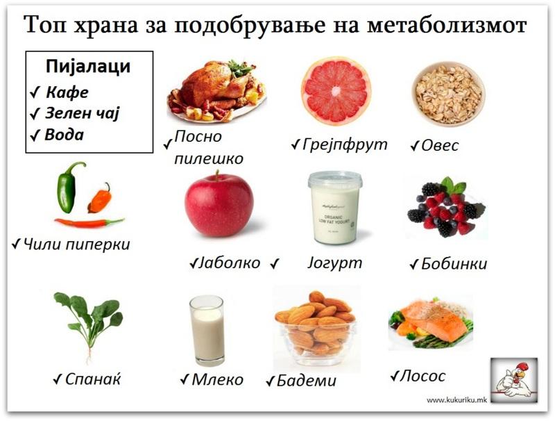 метаболизам3-001