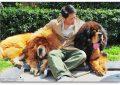 Кина троши 1,5 милијарди долари на домашни миленици