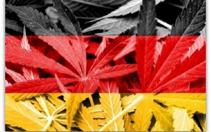 Германија ќе ја легализира марихуаната во медицински цели