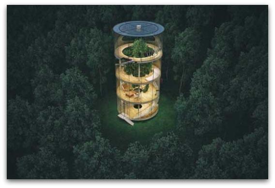 Куќа на дрво - дрво во куќа1-001