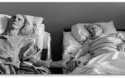 Сакате живот во длабока старост? Стареењето е еден од најкомплексните биолошки процеси, а ова е неговиот клуч