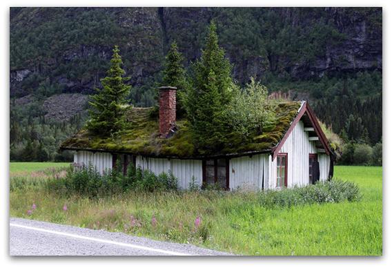 Бајковити зелени покриви во Норвешка3-001