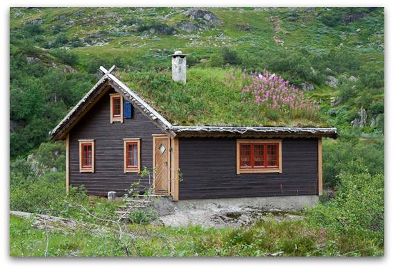 Бајковити зелени покриви во Норвешка4-001