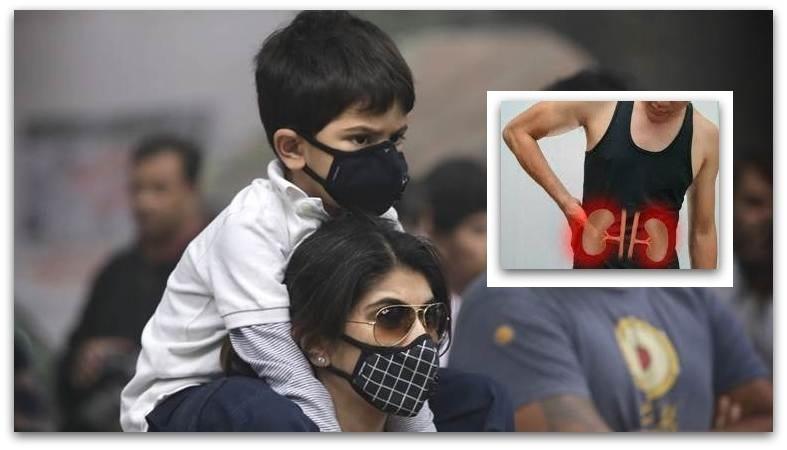 Загадувањето на воздухот штетно влијае и врз бубрезите